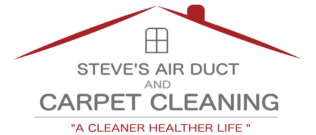 Ann Arbor Steves Air Duct and Carpet