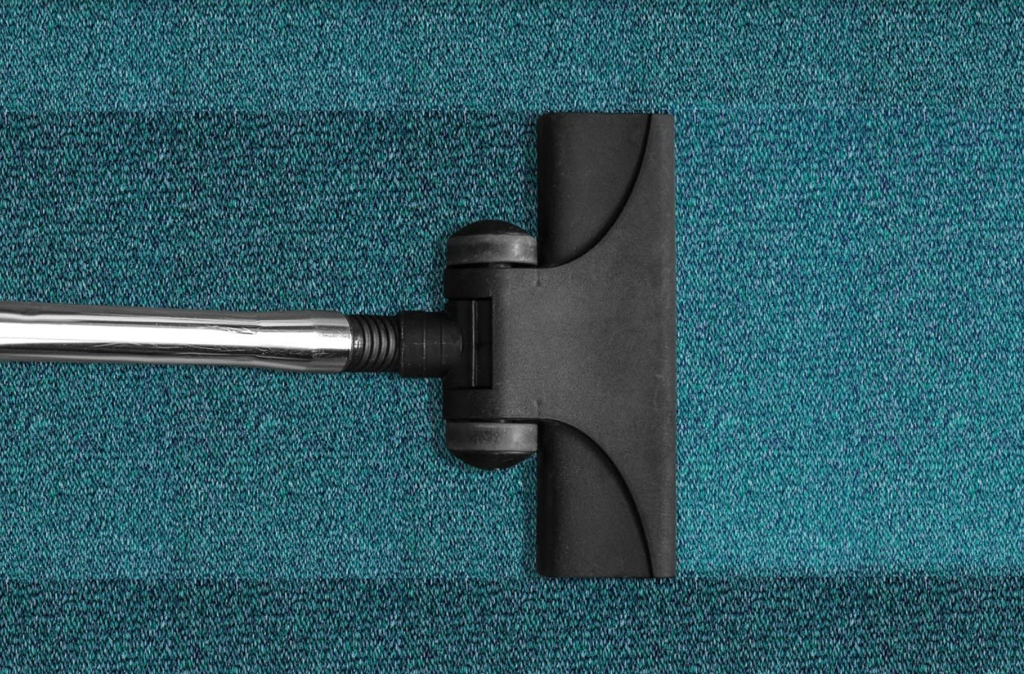 Professional Carpet Cleaning Service Company Ann Arbor